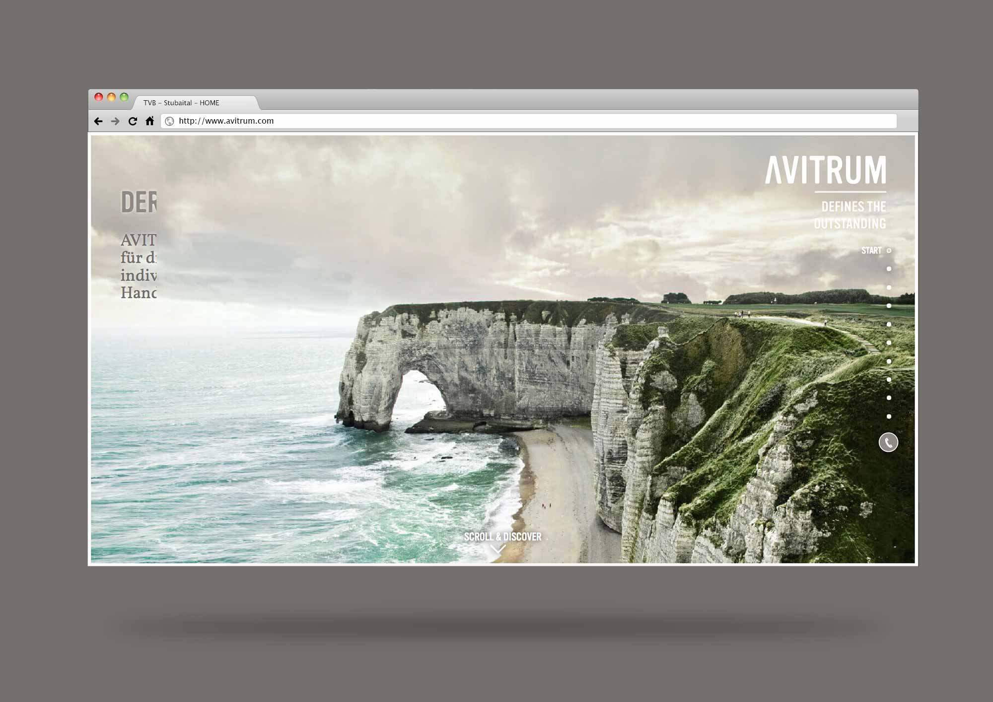 AVITRUM_website_browser_template_01